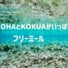 これがハワイの「KOKUA」フリーミール配布