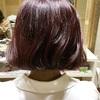 韓国タンバルモリカットとピンクベルベットのヘアカラーでオルチャン風になった。