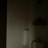 【閲覧注意】わが家のトイレに棲み着いてしまった、2匹の妖怪。