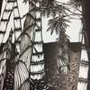 筍と竹藪③