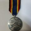蒐集品を晒す-2013年洪水救援出動メダル