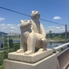 韓国旅行二日目(3)。公山城から公州総合バスターミナルまで歩く。公州は熊の街
