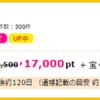 【沖縄へ行ける!!】17,000円(15,300マイル)SBI FX新規取引でもらえる【獲得条件も簡単】
