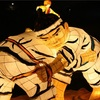 相撲の話ばかりじゃダメですが。すいません。相撲以外に、今興味ありません。