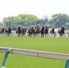 ◆競馬予想◆8/11(日) 特選穴馬&軸馬候補
