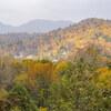 【初秋の紅葉】初秋の遠別原野は熊の縄張り