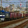 1月11日撮影 東海道線 平塚~大磯間 貨物列車3本