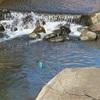 春の川辺・エトセトラ