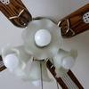 アイリスオーヤマのLED電球で、照明代を節約!