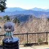 観光も自然も満喫!高尾山に登ってきた。登山編
