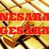 NESERA・GESERA(ネセラ・ゲセラ)とは何か!? 世界を救う!?新法成立か