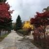 紅葉と北海道と義父