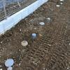 基礎工事 2日目 雨水管設置