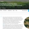 Kaggle 画像分類、時間短縮と精度向上のメモ