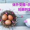【不妊治療】はじめての体外受精・妊娠判定(無念の陰性)