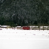 靴にも沁みない、ナゲーのフーケー 冬の谷汲線1994