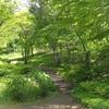 馬鹿げて広い滝野すずらん丘陵公園で、トレッキングしてきた