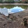 八王子池(和歌山県橋本)