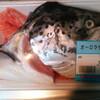僕はあらゆる水産物を賞味したい。~偶然の出会いに超感謝編~
