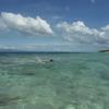 セブで1番きれいな海!?モアルボアルが最高だったので、もう一回行くことにした!