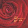 3月9日マヤ暦メッセージ