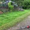 8月の草刈り -その4:家の周りの草刈りー