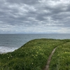 海岸パワーウォーク