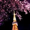 東京タワーが見えるホテル22選!写真やプランで比較