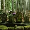 鎌倉に行ってきたので写真を貼っていくよ(円覚寺、報国寺、鎌倉大仏、建長寺)