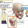 側頭筋リリースの研究の過程で首筋の側面の筋肉がゆるむのか?!