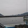 岡山釣り場 日生港