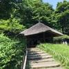 都会の中の森を歩く。癒しを求め『明治神宮御苑』で緑と静寂を満喫した日。