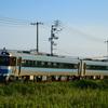 第1460列車 「 特急!?普通!? 国鉄気動車キハ185系3100番台を狙う 2020・お盆 予讃線紀行その4 」