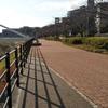 【新横浜公園】日産スタジアムの隣に親子で楽しめる公園があるよ!