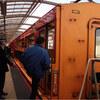 嵯峨のトロッコ列車で紅葉狩り