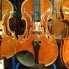 ミドル級新作バイオリンの多彩な誘惑