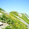 北アルプス/ 白馬岳、テン泊縦走2泊3日!天空の花畑と雷鳥の親子に癒された 後編(2018.7.26-28)