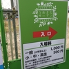 うめきたガーデンは、都会の千円オアシス。