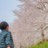 子供のいい写真を撮る4つのポイント!少し味のある写真の撮り方!11