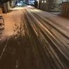 大阪はまさかの雪景色