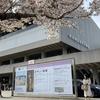「あやしい絵展」@東京国立近代美術館