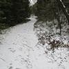 雪の平尾台を見に行く