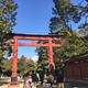 大宮氷川神社は駅から歩いて行けるパワースポット