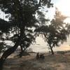 コト島の続き