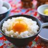 【考察】体調不良の原因は「食事」?ー食生活改善に向けてのアクションプラン3選ー