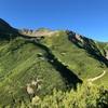 【登山No.61⑤】日本百名山 仙丈ヶ岳/絶景と雷鳥と