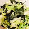 生の白菜。みずみずしくてシャキシャキで、オススメです💕