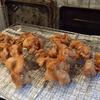 幸運な病のレシピ( 1354 )朝:鶏のから揚げ、大学芋、塩サバ、鮭、ブロッコリー、だし巻き卵、イカ里芋、後に味噌汁、摂食障害のこと