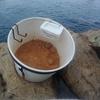 紀州釣り クロダイゲットの第一歩 ダンゴレシピを公開してみる