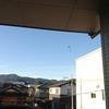 クモの巣☆
